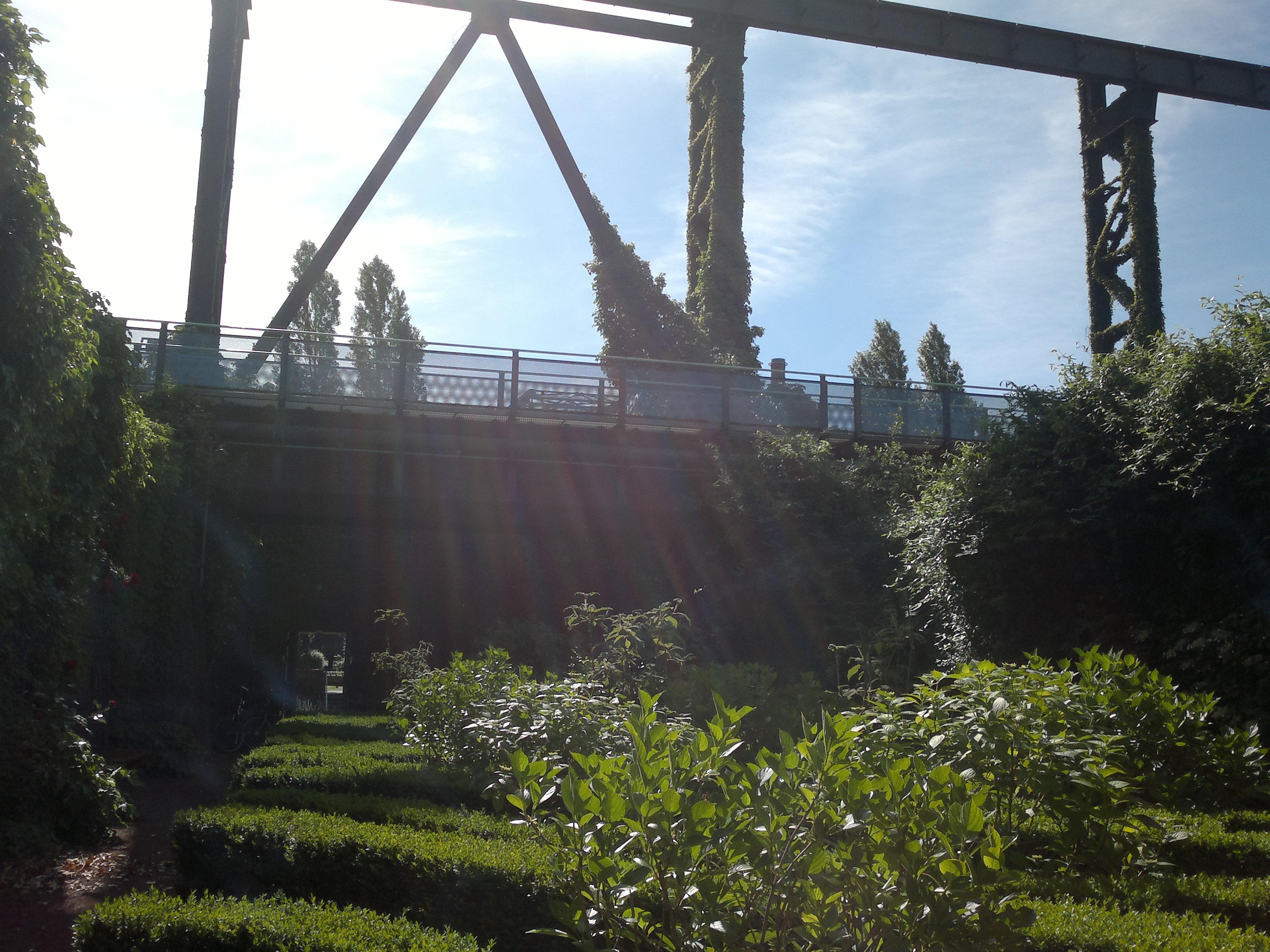 """Ausblick nach oben aus einem der """"geheimen"""" Gärten, die in den ehemaligen Koksbunkern angelegt wurden"""